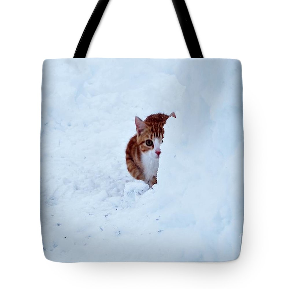 Cat Tote Bag featuring the photograph The Hunter by Paul Finnegan