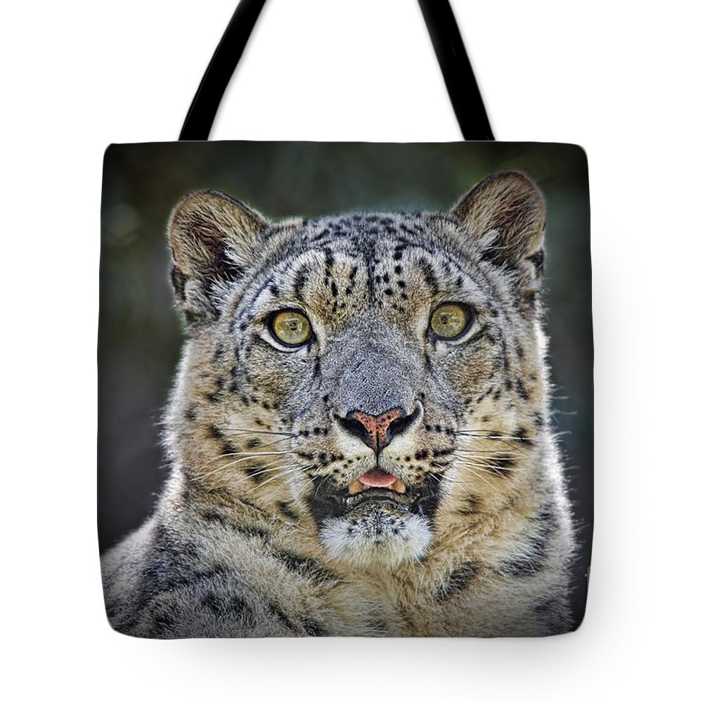 Snow Leopard Tote Bag featuring the photograph The Intense Stare Of A Snow Leopard by Jim Fitzpatrick