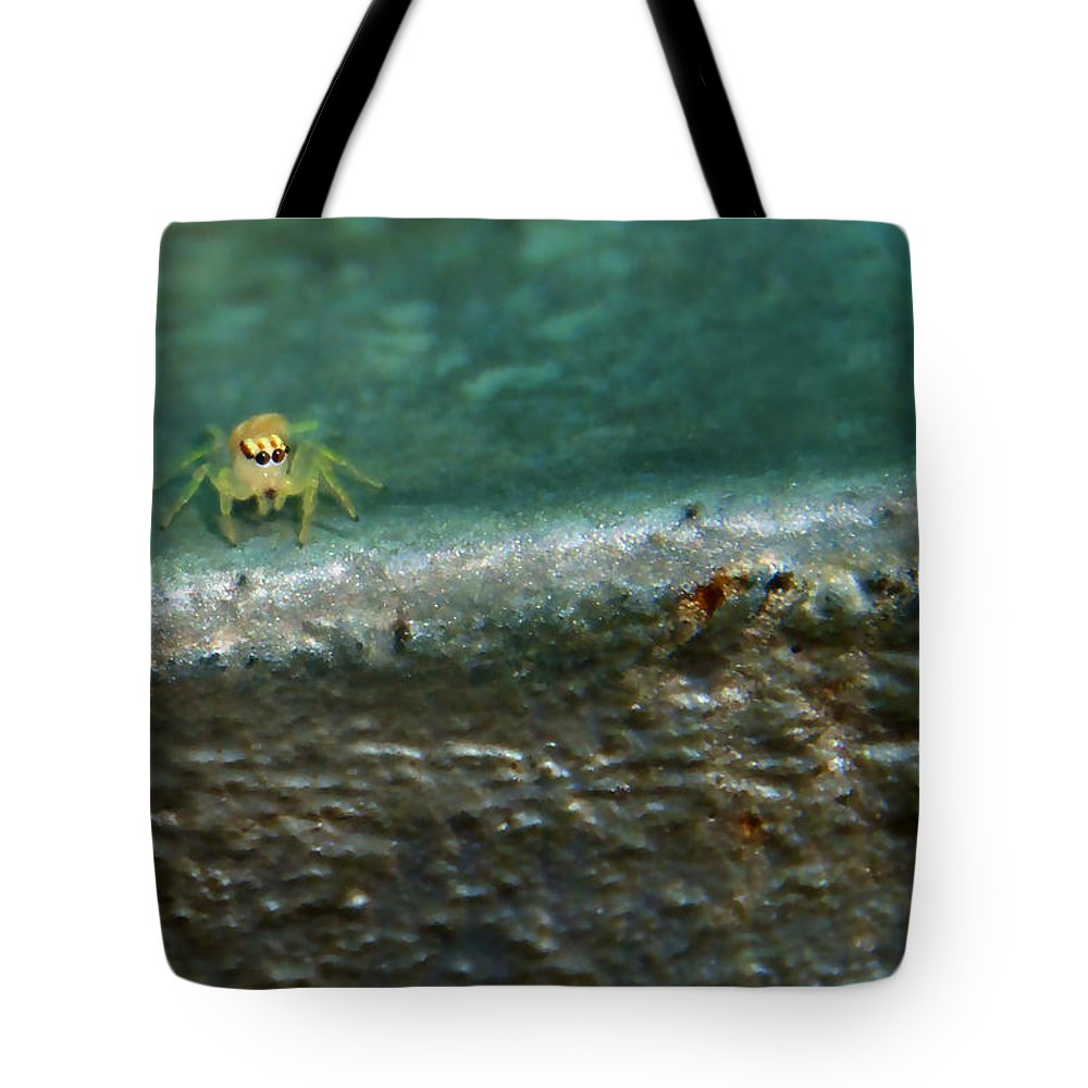 Spider Tote Bag featuring the photograph The Itsy Bitsy Spider by Bibi Rojas