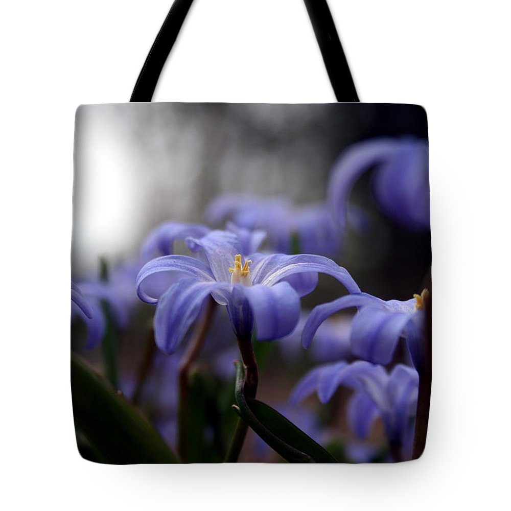 Spring Tote Bag featuring the photograph The Joy Of Springtime by Laura Kinker