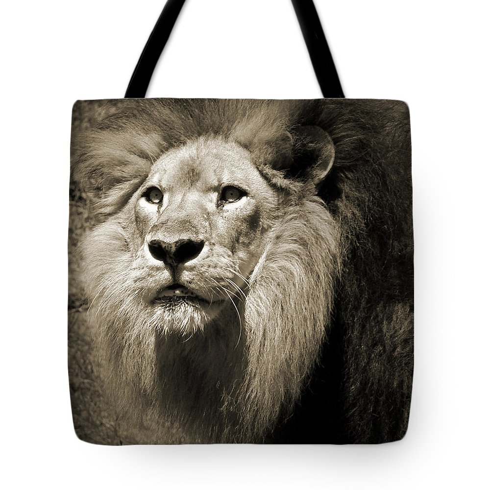 Lion Tote Bag featuring the photograph The King II by Steven Sparks