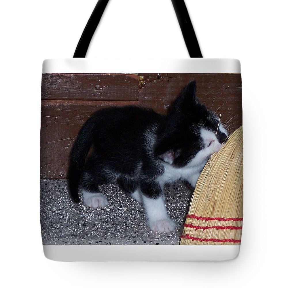 Kitten Tote Bag featuring the photograph The Kitten And The Broom by Michelle Miron-Rebbe