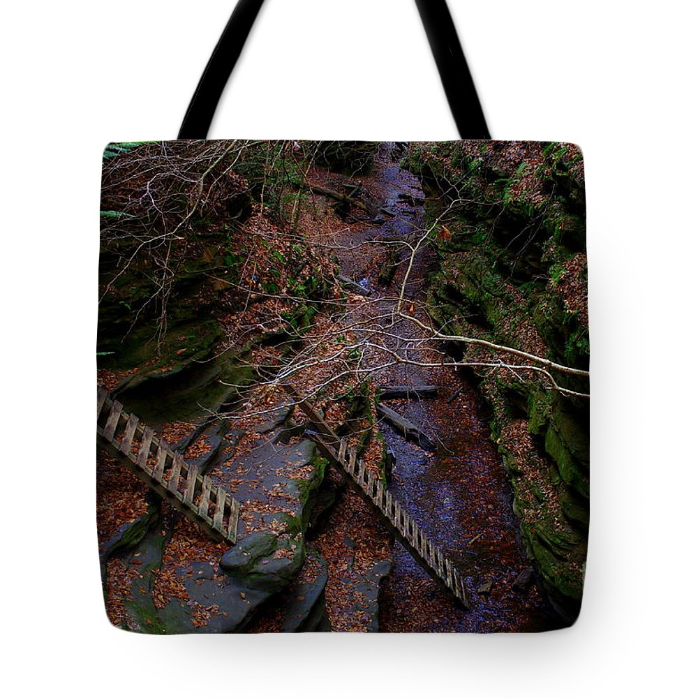 Tote Bag featuring the photograph The Ladders by Kitrina Arbuckle