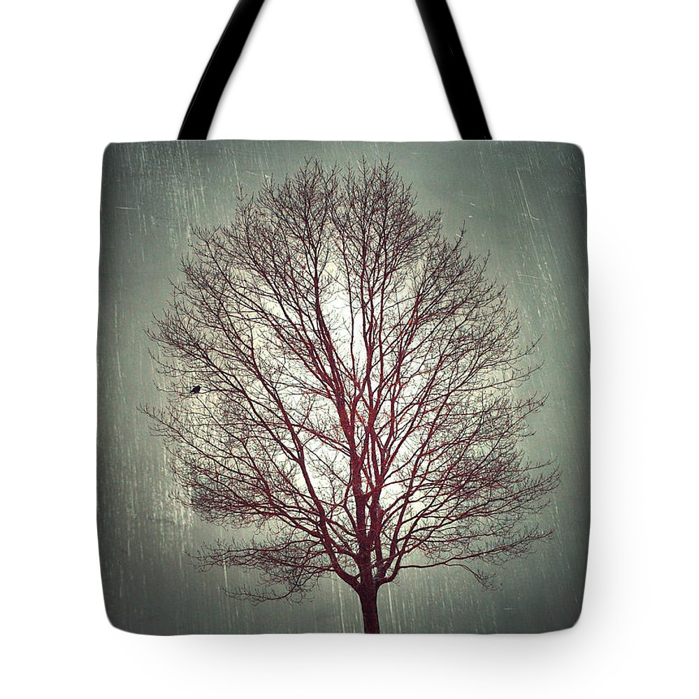 Tree Tote Bag featuring the photograph The Light Within by Tara Turner
