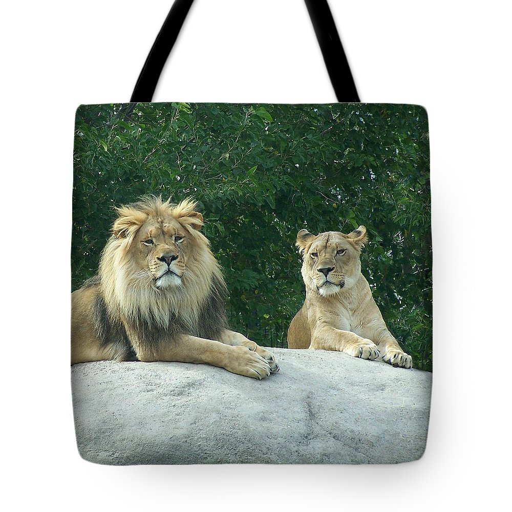 Lion Tote Bag featuring the photograph The Lions by Ernie Echols