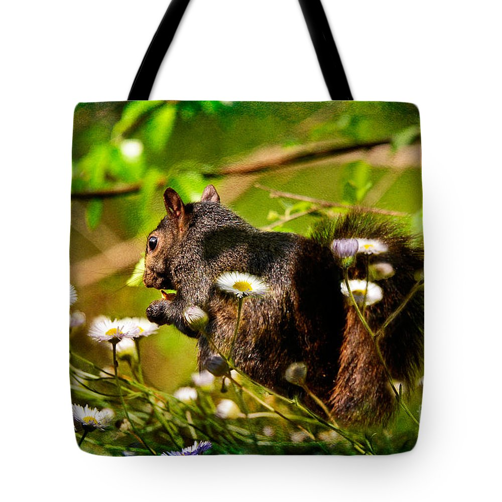 Squirrel Tote Bag featuring the photograph The Little Things by Lois Bryan