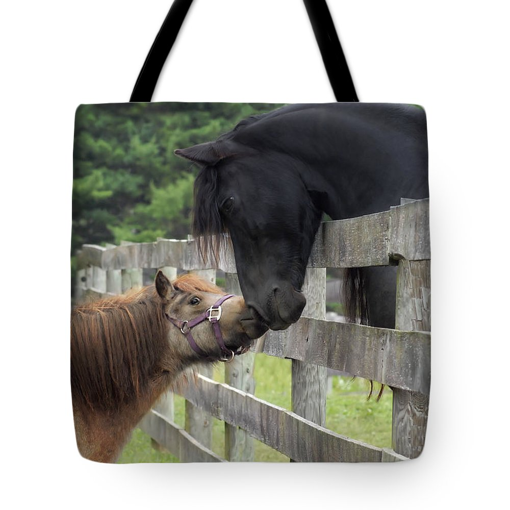 Horses Tote Bag featuring the photograph The Little Visitor by Fran J Scott