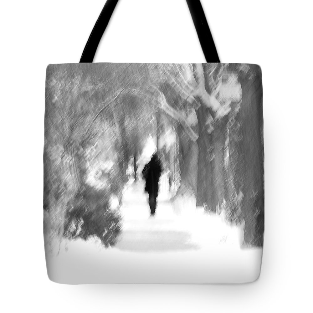 Blur Tote Bag featuring the photograph The Long December by Dana DiPasquale