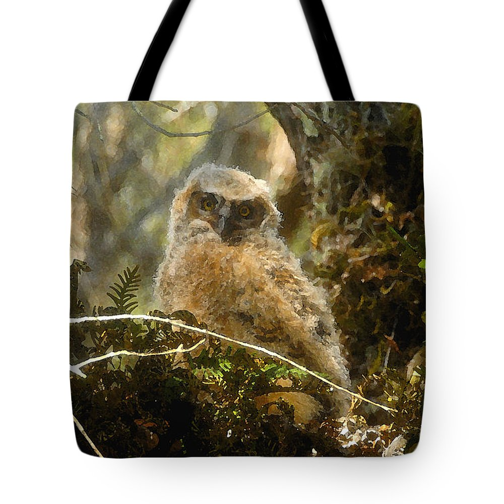 Baby Owl Tote Bag featuring the painting The Look Of Innocence by David Lee Thompson