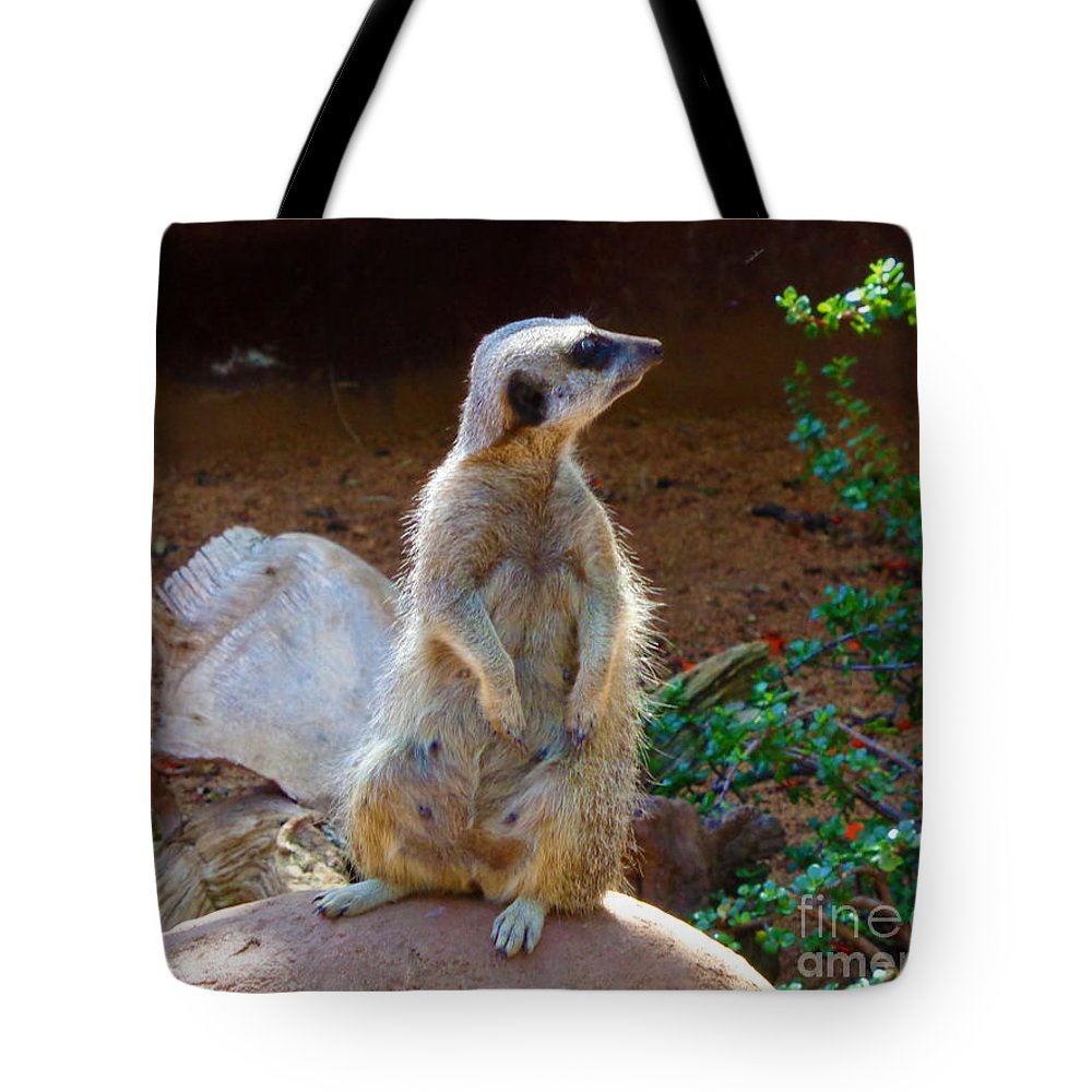 Meerkat Tote Bag featuring the photograph The Lookout - Meerkat by Tracey Everington