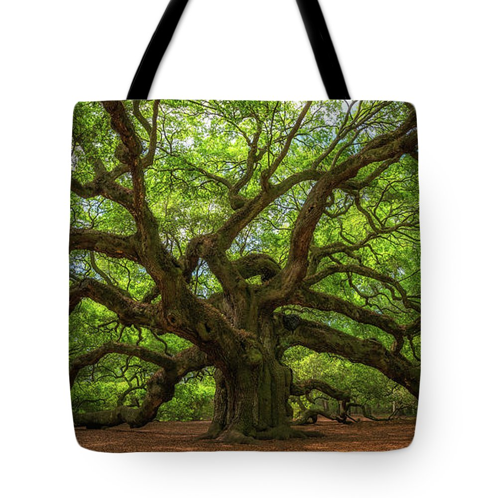 Angel Oak Tree Tote Bag featuring the photograph The Magical Angel Oak Tree Panorama by Michael Ver Sprill