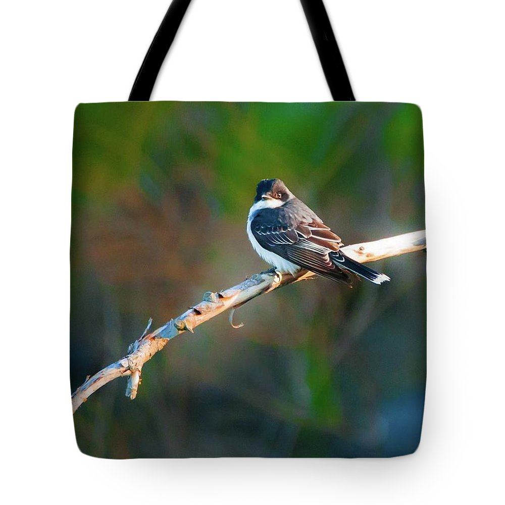 Bird Tote Bag featuring the photograph The Mighty Eastern Kingbird by Heather Hubbard