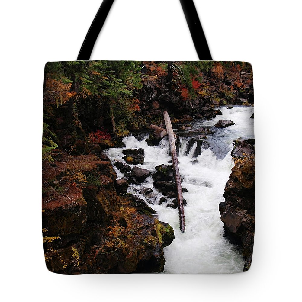 Water Tote Bag featuring the photograph The Natural Bridge Gorge by Teri Schuster