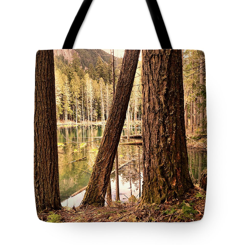 Forest Tote Bag featuring the photograph The Not To Distant Shore by Jeff Swan