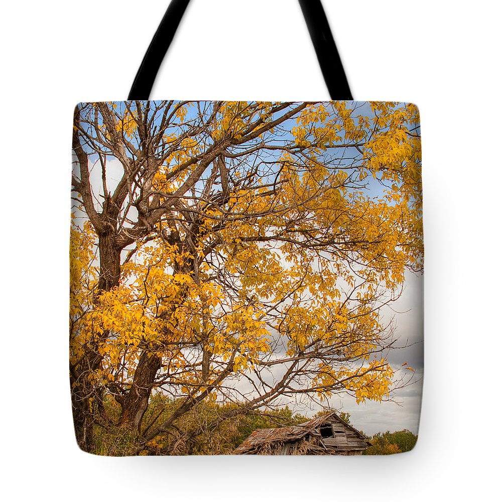 Canada Tote Bag featuring the photograph The Old Homestead by Colette Panaioti