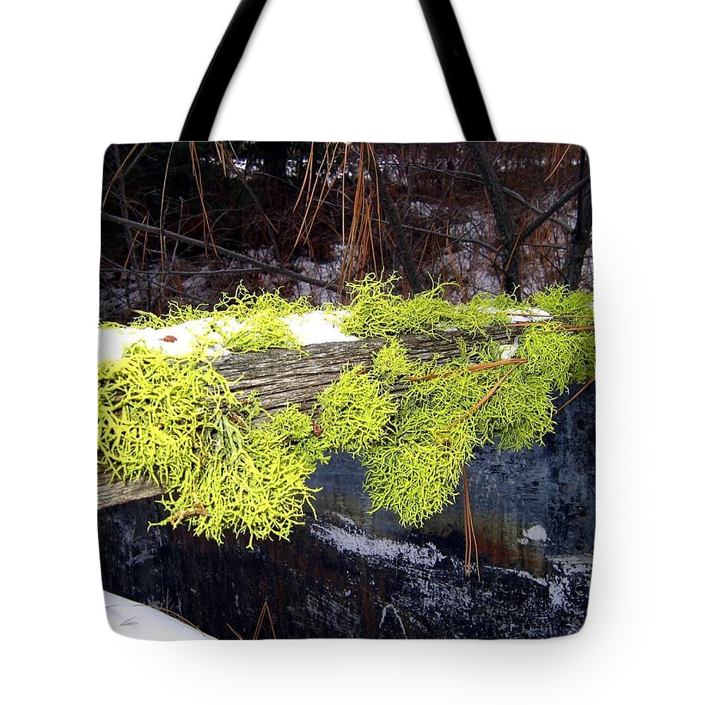 Moss Tote Bag featuring the photograph The Old Mossy Flume by Will Borden