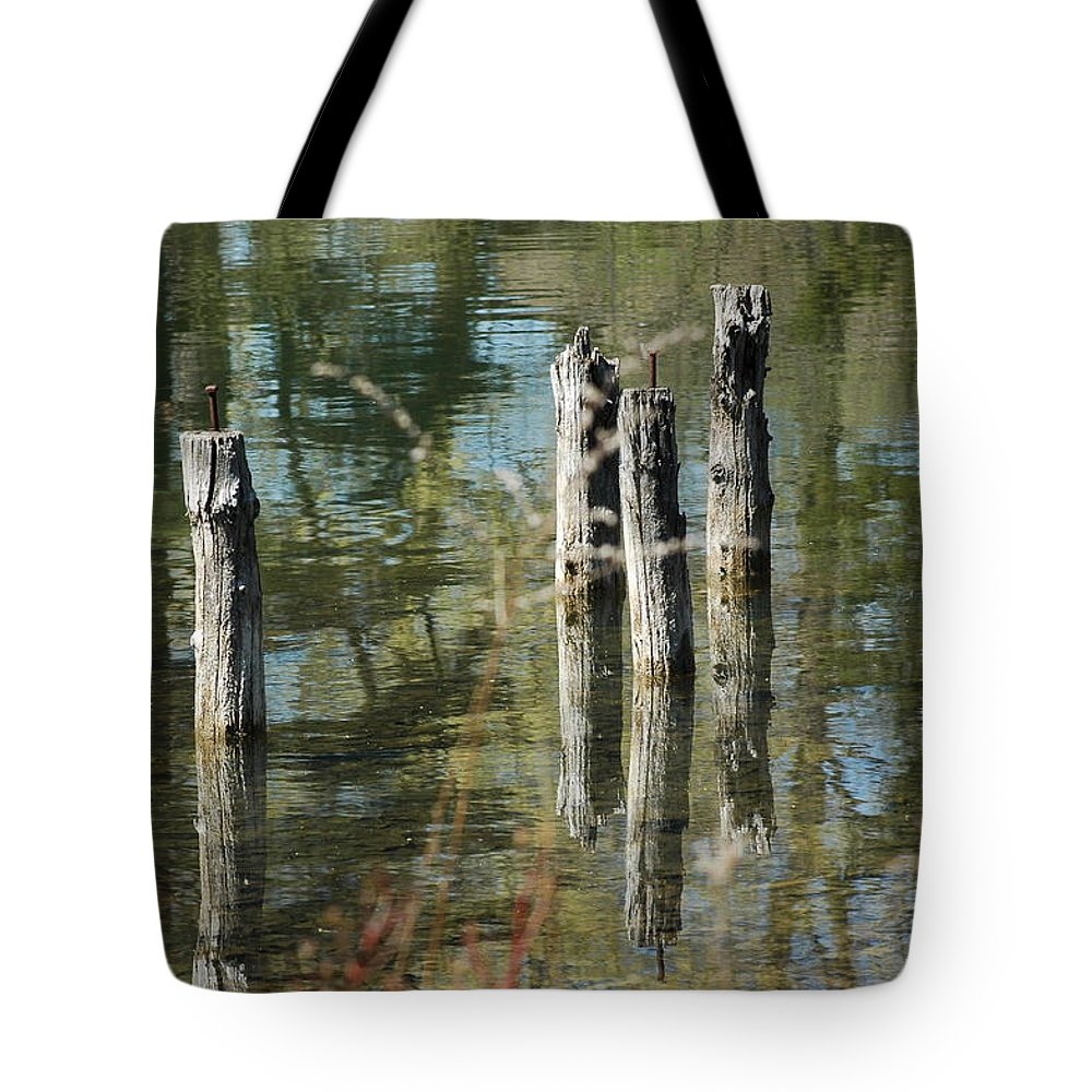 Landscapes Tote Bag featuring the photograph The Old Swimming Hole by LeeAnn McLaneGoetz McLaneGoetzStudioLLCcom