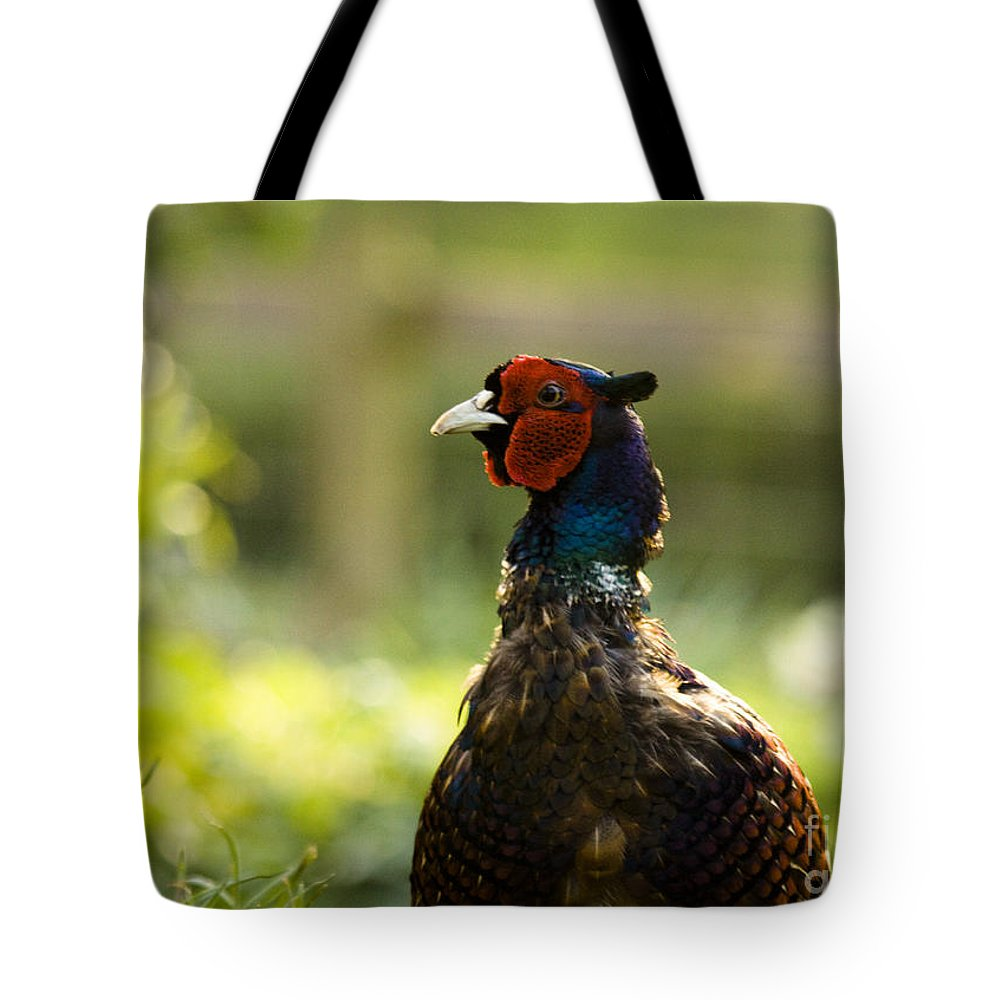 Pheasant Tote Bag featuring the photograph The Owner Of My Garden by Angel Ciesniarska