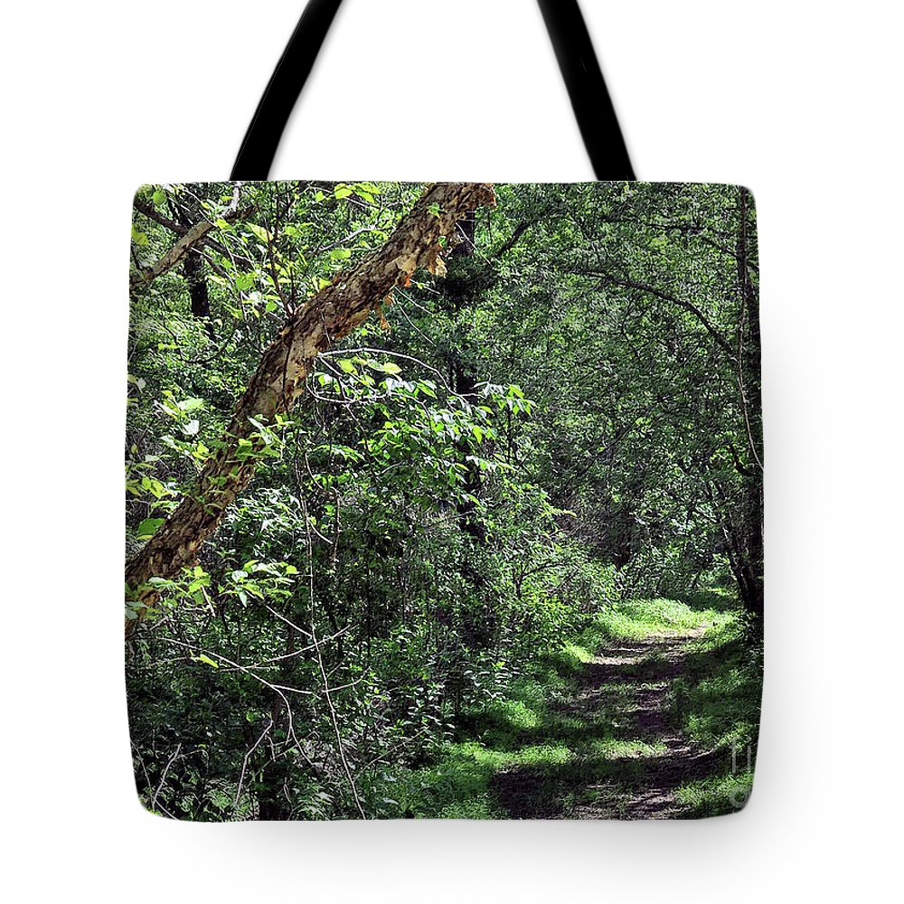 Trees. Path Tote Bag featuring the photograph The Path We Walked by Lydia Holly