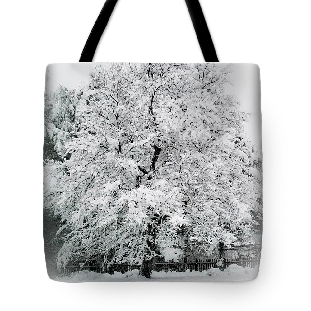 Tree Tote Bag featuring the photograph The Pear Tree by Heather Hubbard