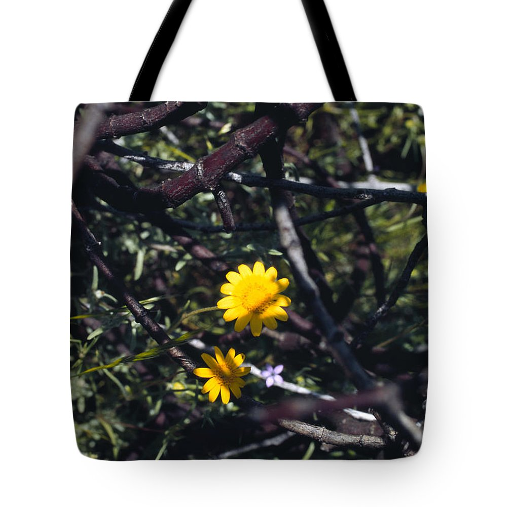 Flower Tote Bag featuring the photograph The Prisoner by Randy Oberg