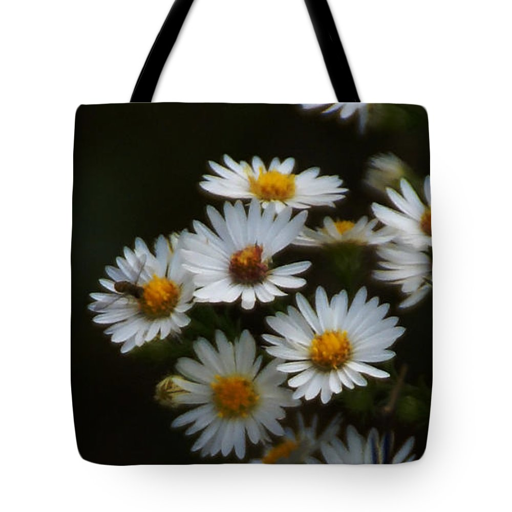 Aster Tote Bag featuring the photograph The Promise Of Fall by Linda Shafer