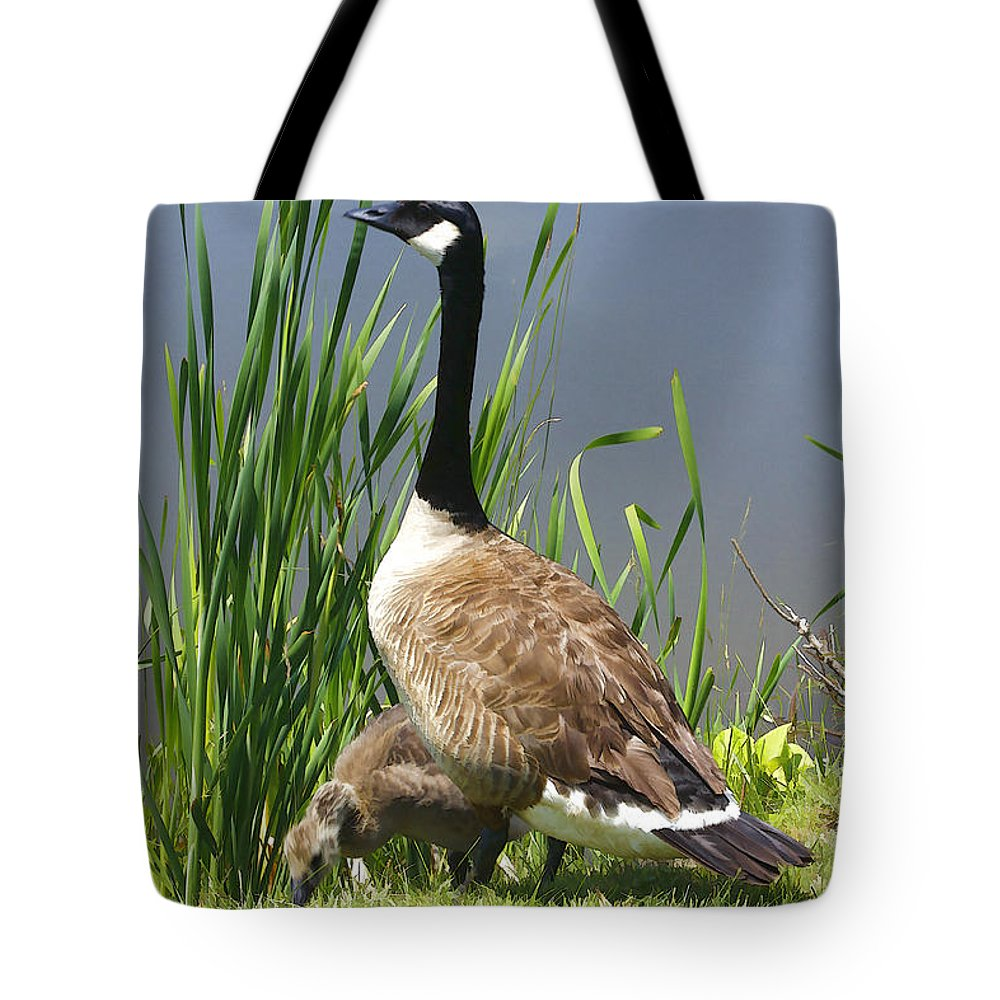 Goose Tote Bag featuring the photograph The Protector by Deborah Benoit