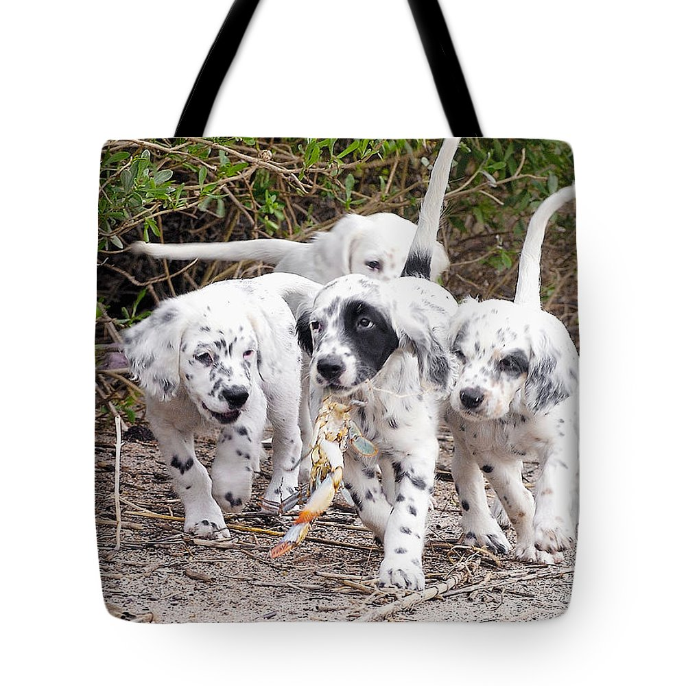 English Setter Tote Bag featuring the photograph The Puppy's Prize by Scott Hansen