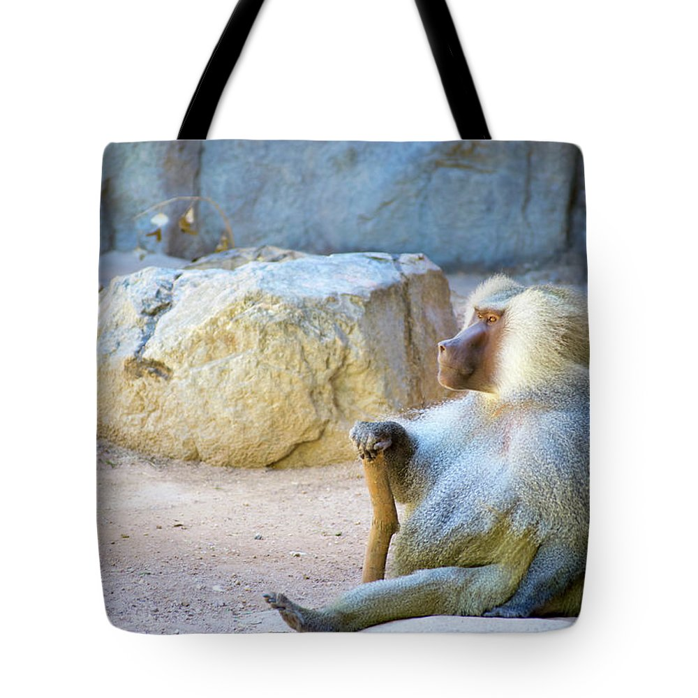 Monkey Tote Bag featuring the photograph The Real Rafiki by Micah Williams