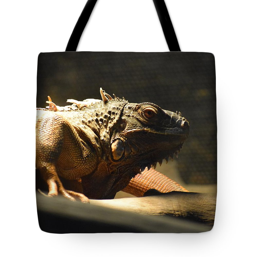 Tote Bag featuring the photograph The Reptile World by Harshad Pendar