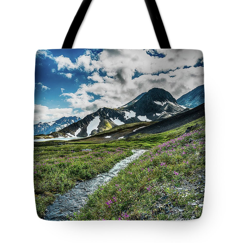 Crow Pass Tote Bag featuring the photograph The River Valley at Crow Pass by Heather Hubbard