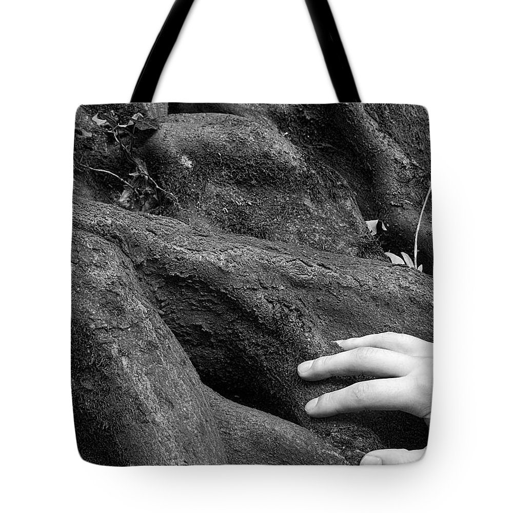 Nature Tote Bag featuring the photograph The Roots by Daniel Csoka