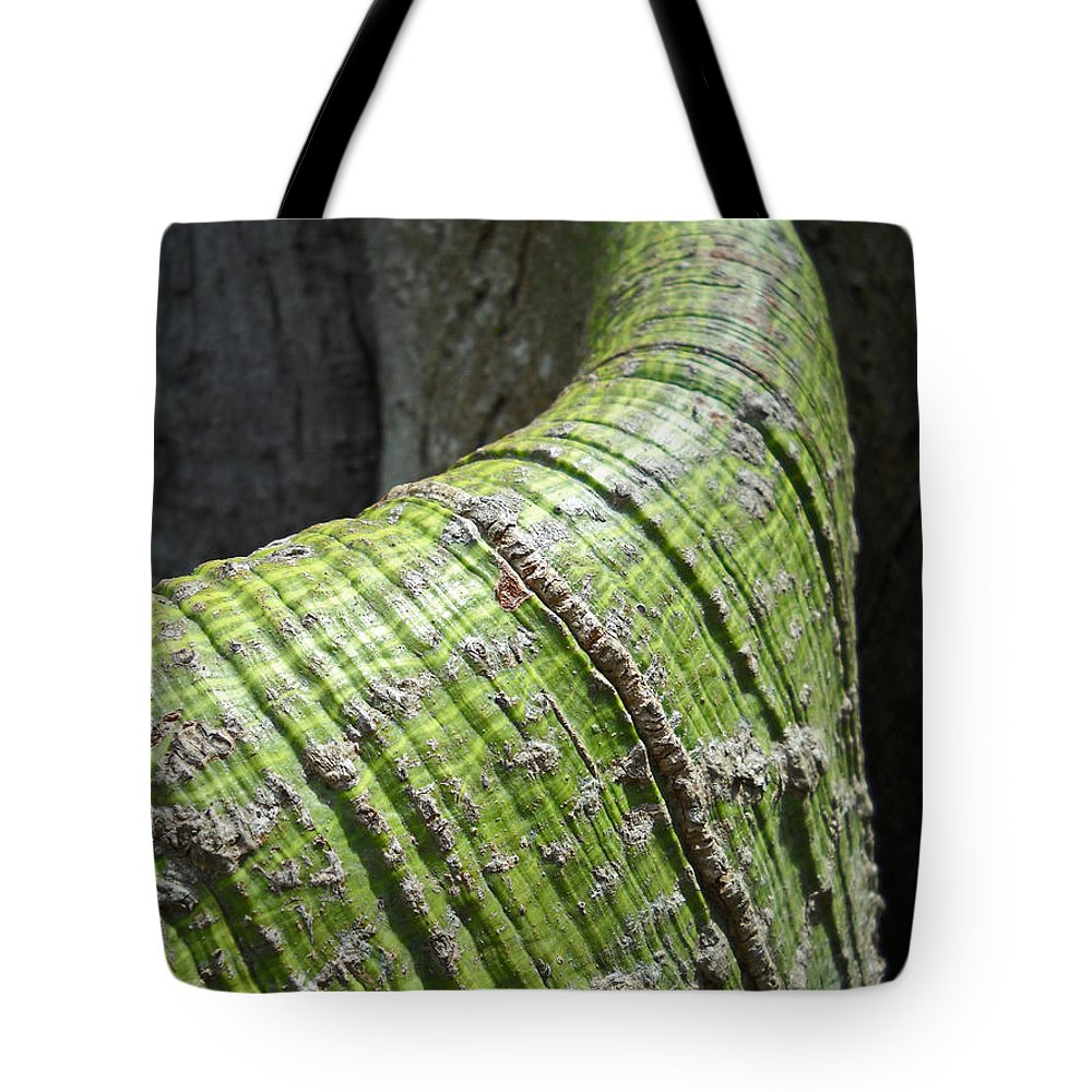 Bermuda Tote Bag featuring the photograph The Skin You're In by Julia Raddatz