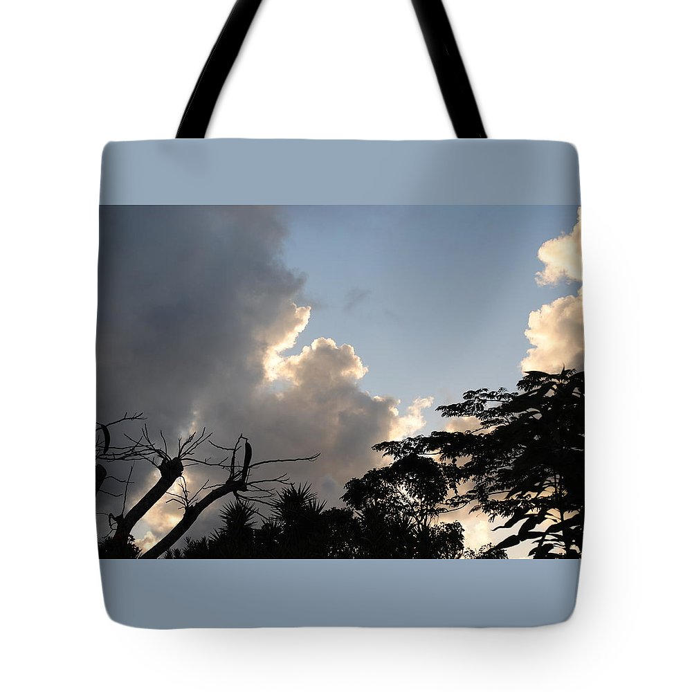 Beautiful Photo Of A Colorful Blue Sky Cloudy Sunset With Flamboyant Trees Taken From Fiona's House In Haciendas El Choco In Sosua Tote Bag featuring the photograph The Sky And The Trees by Fiona Dinali