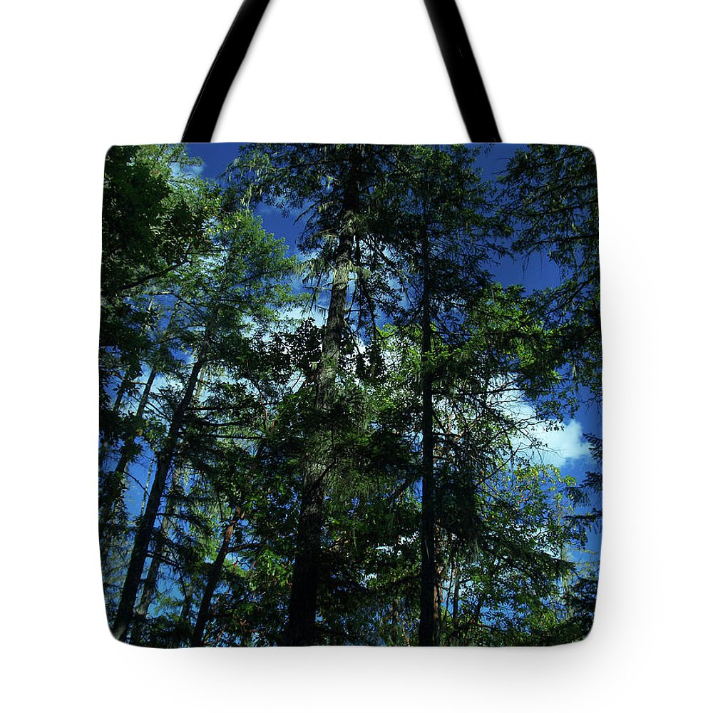 Blue Tote Bag featuring the photograph The Skyline Of Susan Creek Indian Mounds by Teri Schuster