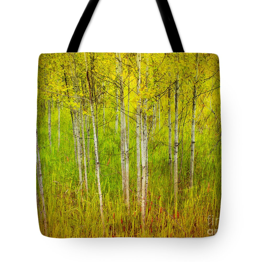 Forest Tote Bag featuring the photograph The Small Forest by Tara Turner