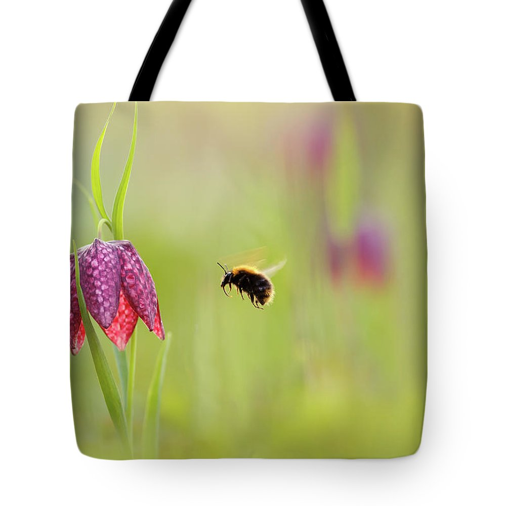 Flower Tote Bag featuring the photograph The Snake's Head And The Bumblebee - Fritillaria Meleagris by Roeselien Raimond