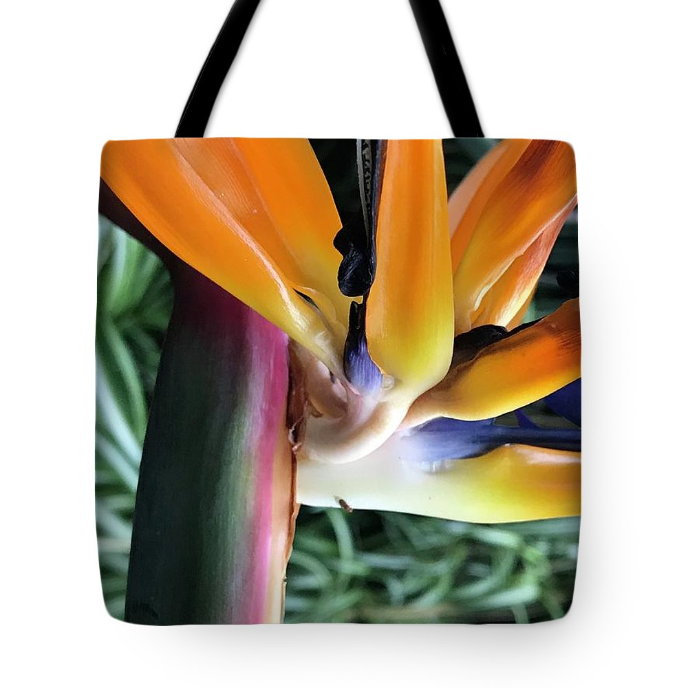 Flowers Tote Bag featuring the photograph The Stalk by Jean Wolfrum
