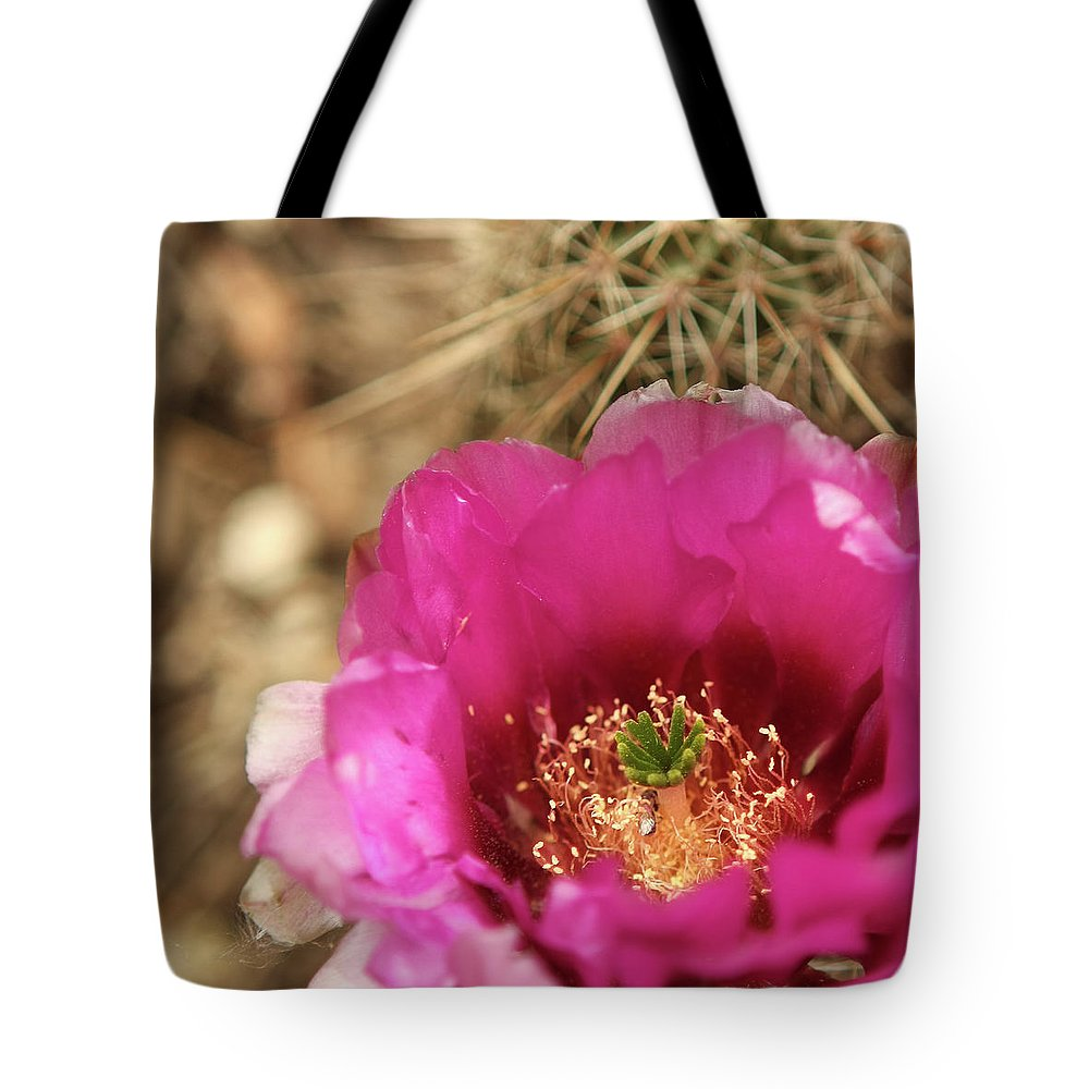 Cactus Flower Tote Bag featuring the photograph The Stigma Of Beauty by Martina Schneeberg-Chrisien