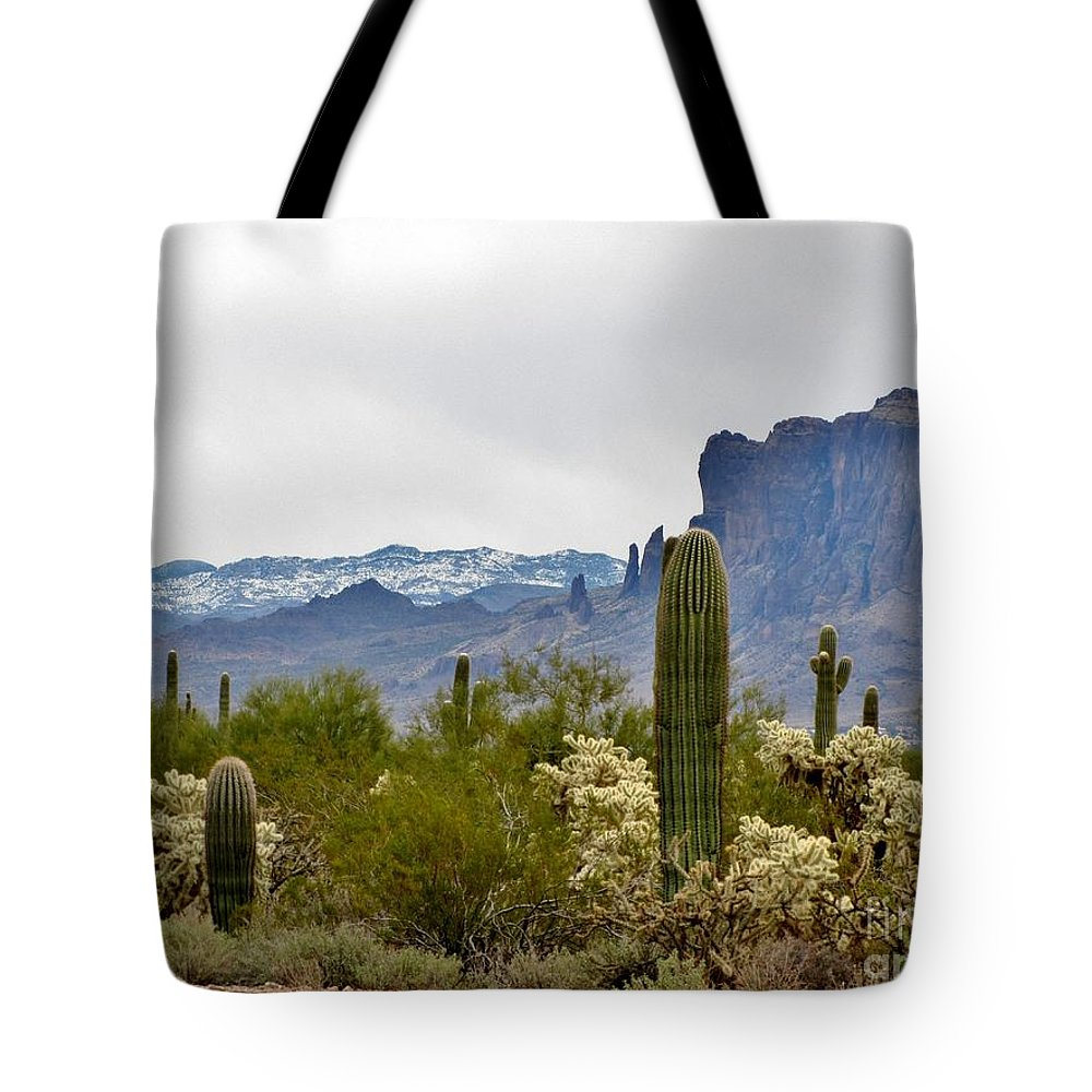 Desert Tote Bag featuring the photograph The Superstitions Landscape by Marilyn Smith