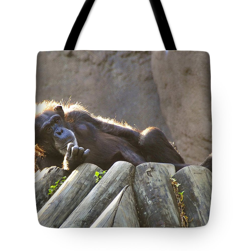 Africa Tote Bag featuring the photograph The Thinker by David Lee Thompson