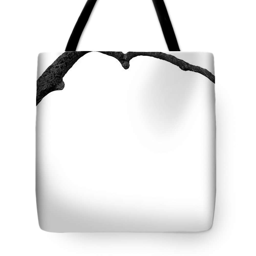 Tree Tote Bag featuring the photograph The Tree by Amanda Barcon