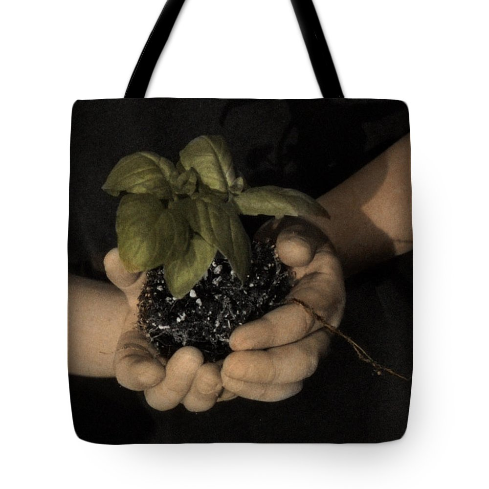 The Twelve Gifts Of Birth Tote Bag featuring the photograph The Twelve Gifts Of Birth - Talent 2 by Jill Reger