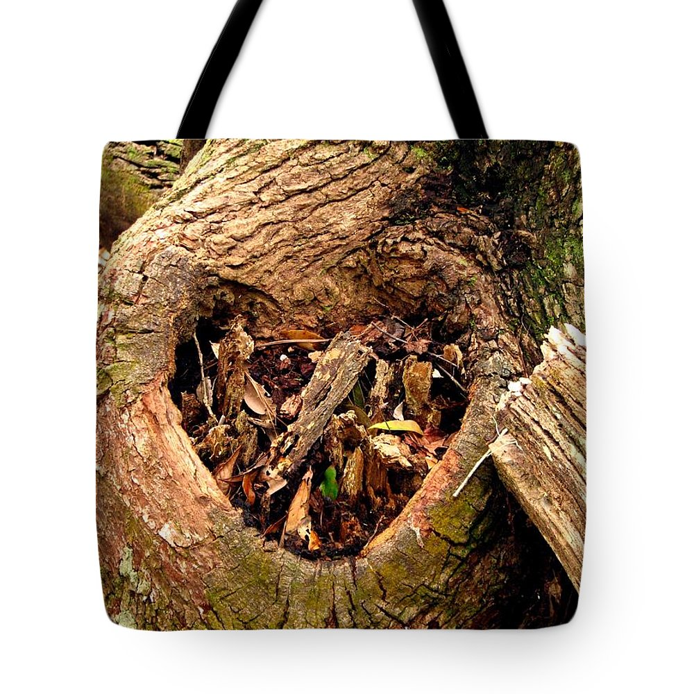 Tree Tote Bag featuring the photograph The Valentine Tree 2 by J M Farris Photography