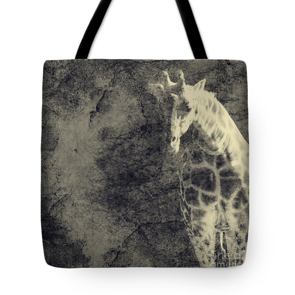 Dipasquale Tote Bag featuring the photograph ...the Vast Expanses Of The Earth by Dana DiPasquale
