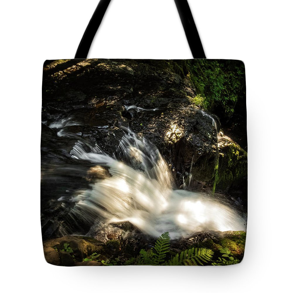 Landscape Tote Bag featuring the photograph The View by Kylee K