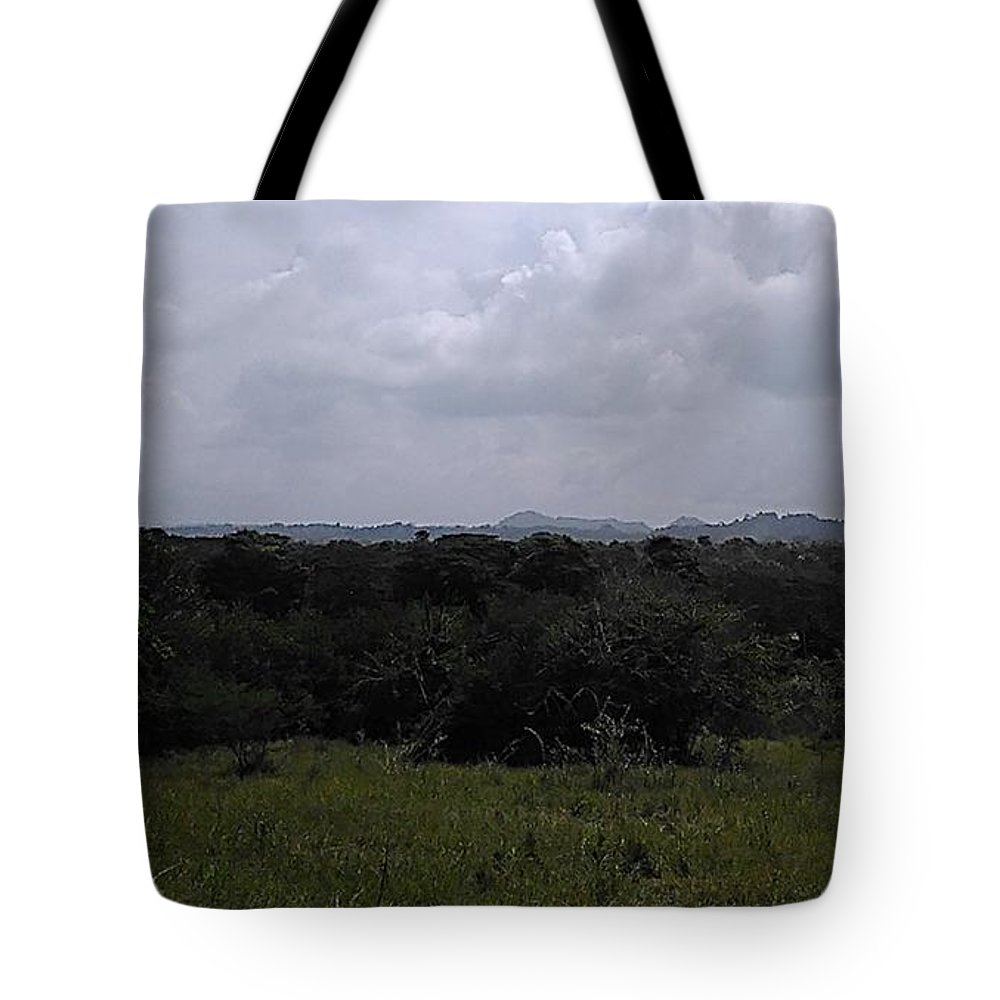 Photograph Tote Bag featuring the photograph The View by Pahola Baro Sfer