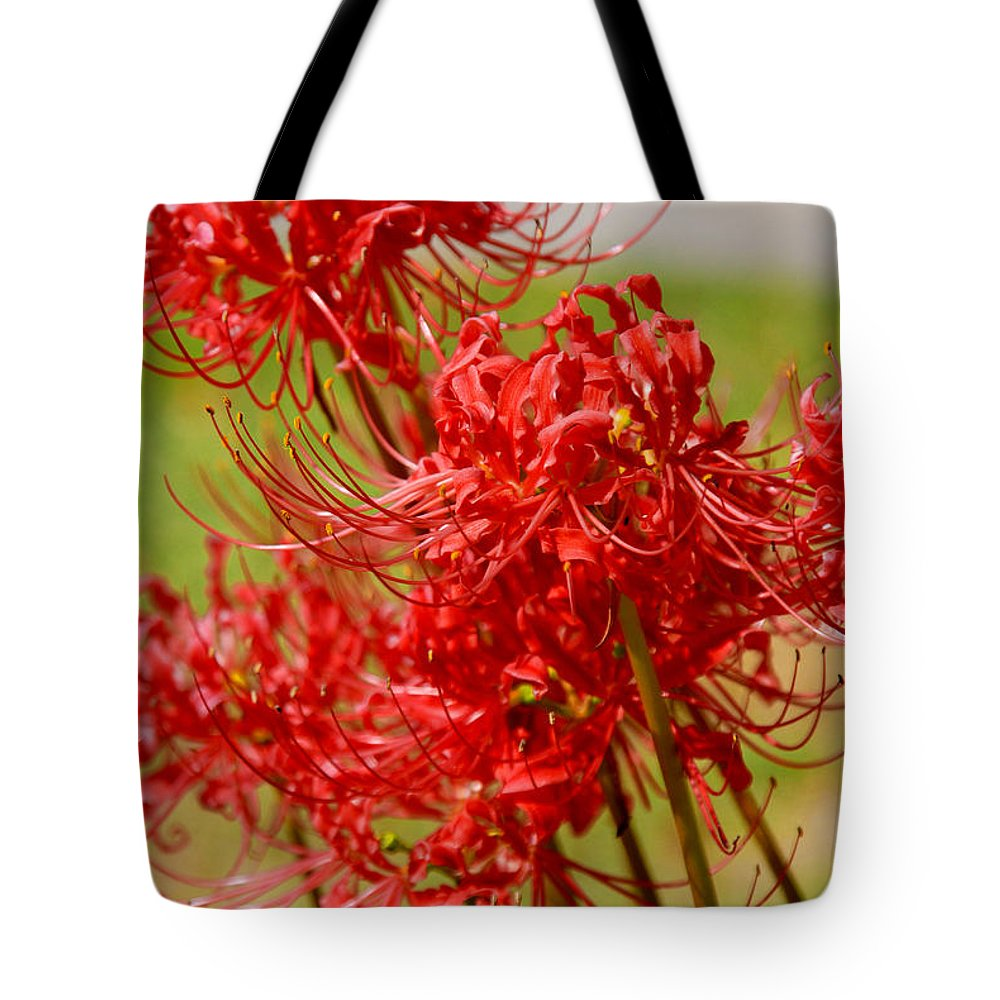Photography Tote Bag featuring the photograph The Virgins by Susanne Van Hulst