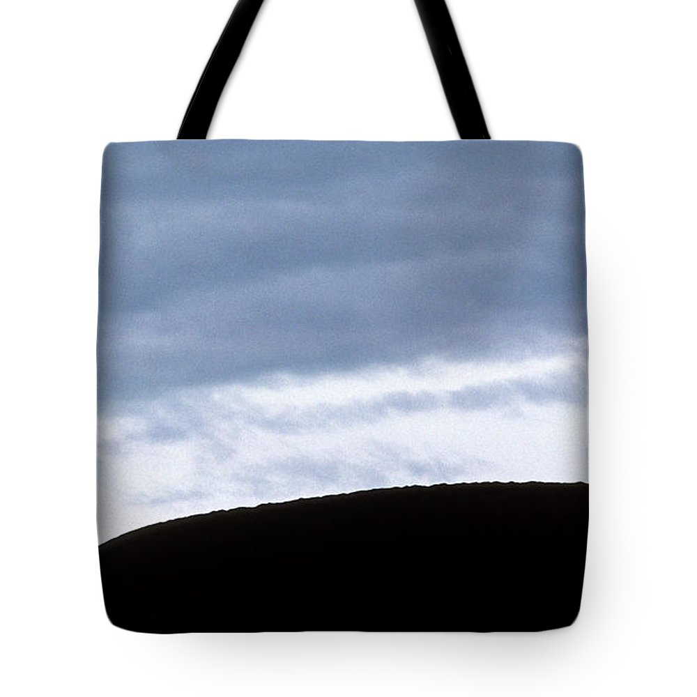 Walking Tote Bag featuring the photograph The Walk by Steve Williams