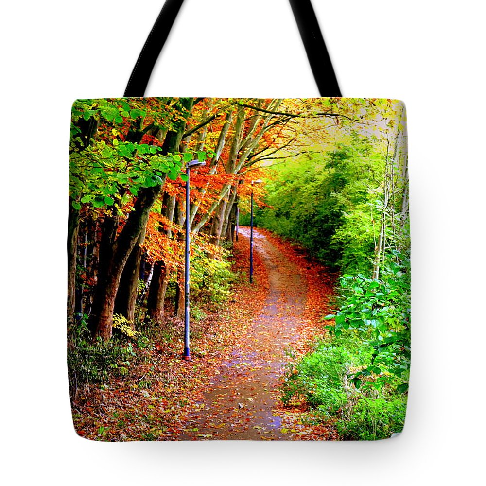 Way Tote Bag featuring the photograph The Way by Bijna Balan